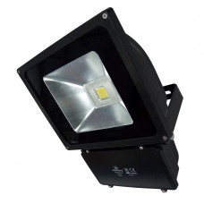 Celsian 3 100W LED Floodlight